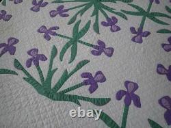 A Joy Forever Stunning Vintage c1910 Iris Applique Quilt Marie Webster 82x78
