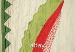 MUSEUM QUALITY Vintage 1850's Princess Feather Applique Antique Quilt BORDERS