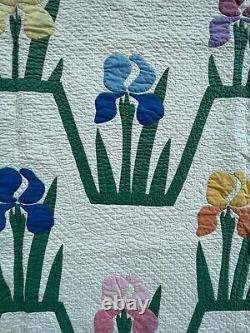 Unusual vintage antique iris quilt hand made